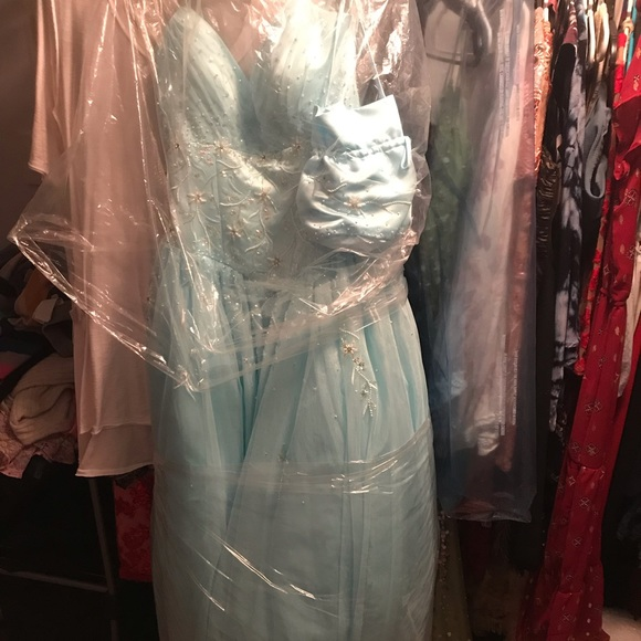 Tiffany Designs Dresses & Skirts - Cinderella Style Ball Gown Pom Dress